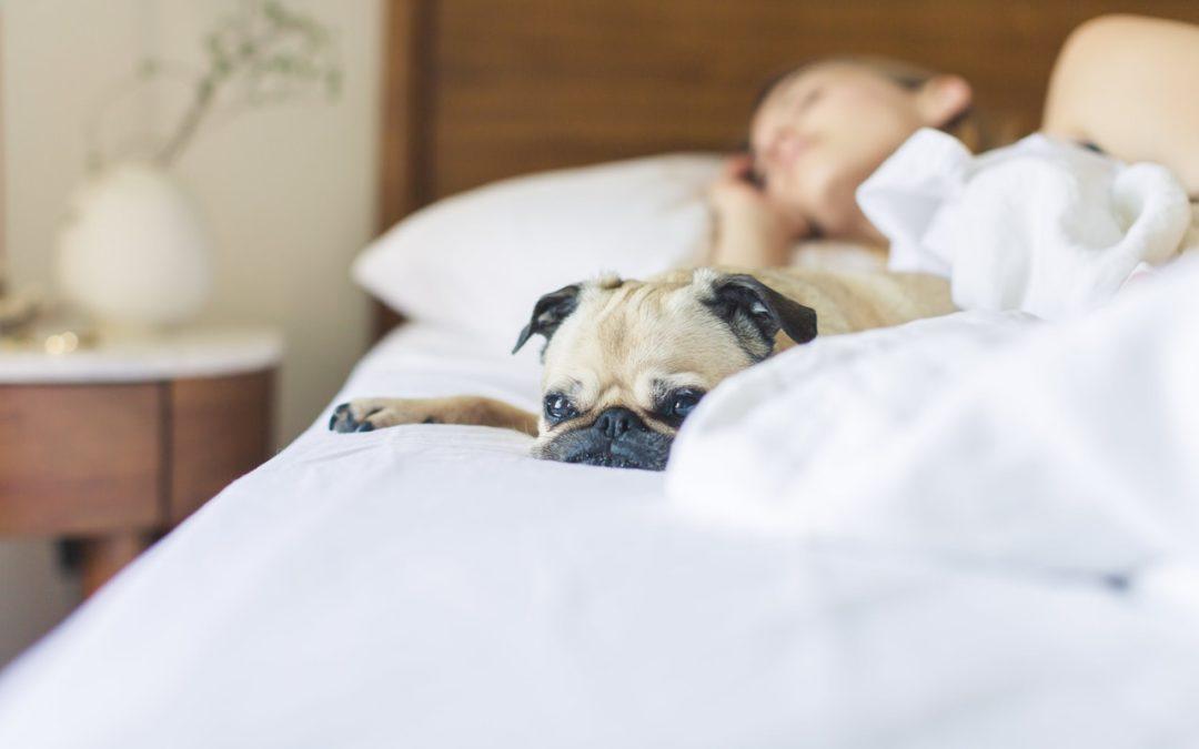Nocne poty – nadmierne pocenie podczas snu